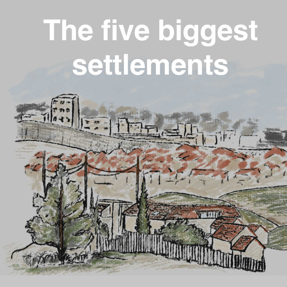 Israel's settlements: 50 years of land theft explained